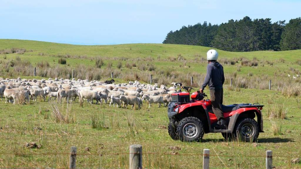 Quad bikes leading cause of death, injury on Australian farms